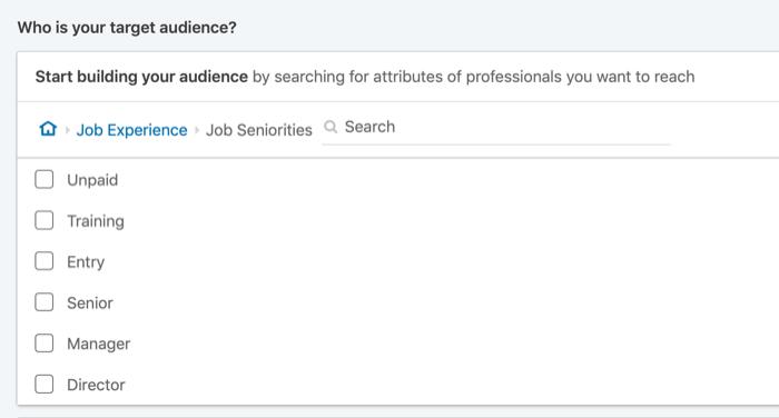 indirizzare gli annunci LinkedIn per anzianità lavorativa