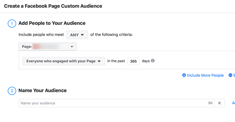 Create a Facebook Page Custom Audience dialog box