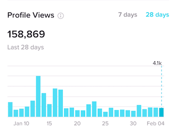 Profile Views section on Overview tab in TikTok Analytics