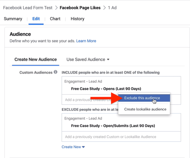 Exclude This Audience option in Audience section of Facebook campaign setup