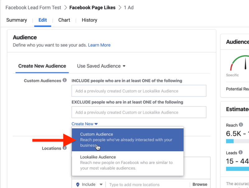 Create New drop-down menu with Custom Audience selected at Ad Set level of Facebook ad campaign