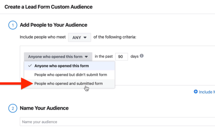 Create a Lead Form Custom Audience window