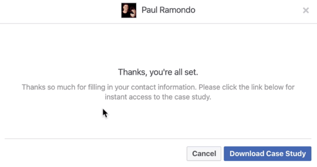 Facebook潜在客户表格预览