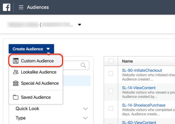 Custom Audience option in Audiences