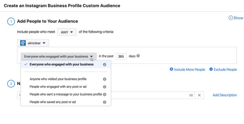 Create an Instagram Business Profile Custom Audience window