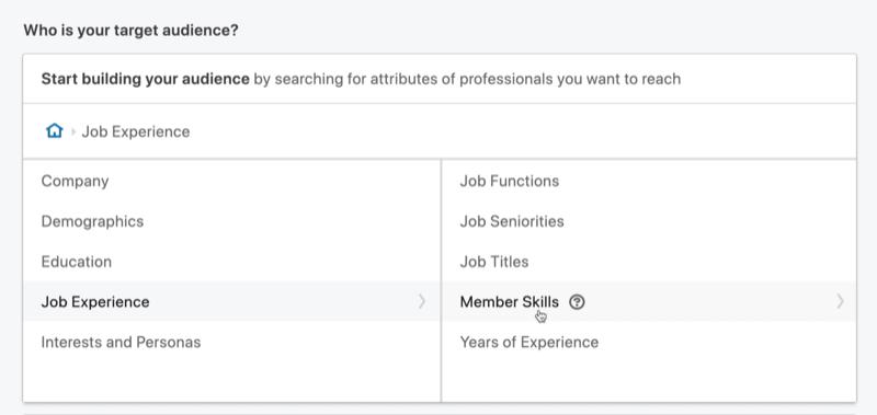 select Member Skills for LinkedIn message ad targeting