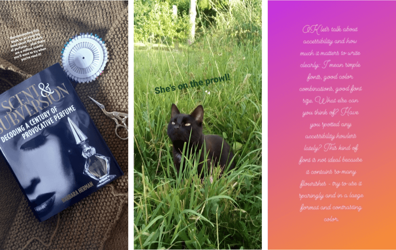 Screenshots of 3 Instagram stories. In the first story, the text is too small to read. The second shows green text against a background photo of a cat sitting in some grass. The third is a text-only story written in very small cursive text.