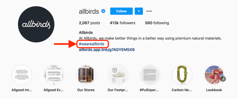 example of a company hashtag included in the profile description of the @allbirds instagram account