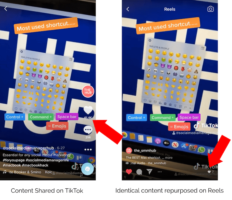 screenshot showing a video on tiktok then repurposed to instagram reels with the reels video showing the tiktok logo and like number in the bottom corner
