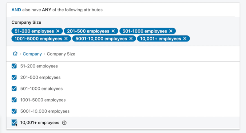 example linkedin ad campaign target audience 'and' attribute set with company size between 51 and 10,001+ employees