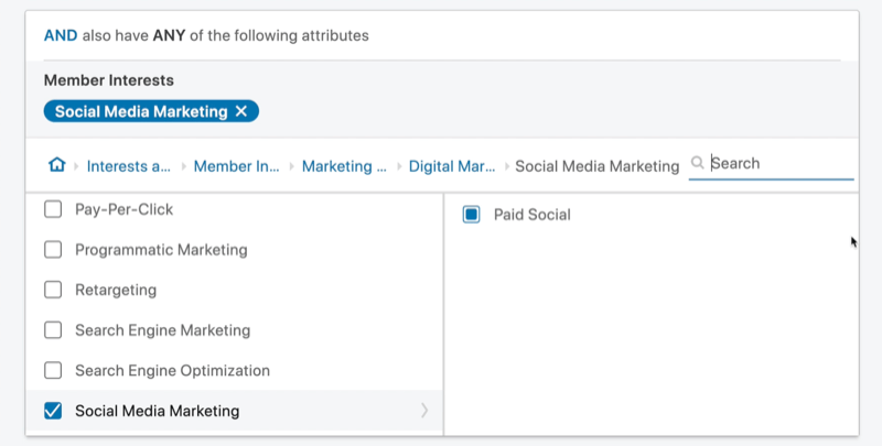 example linkedin ad campaign target audience 'and' attribute set with member interests of social media marketing