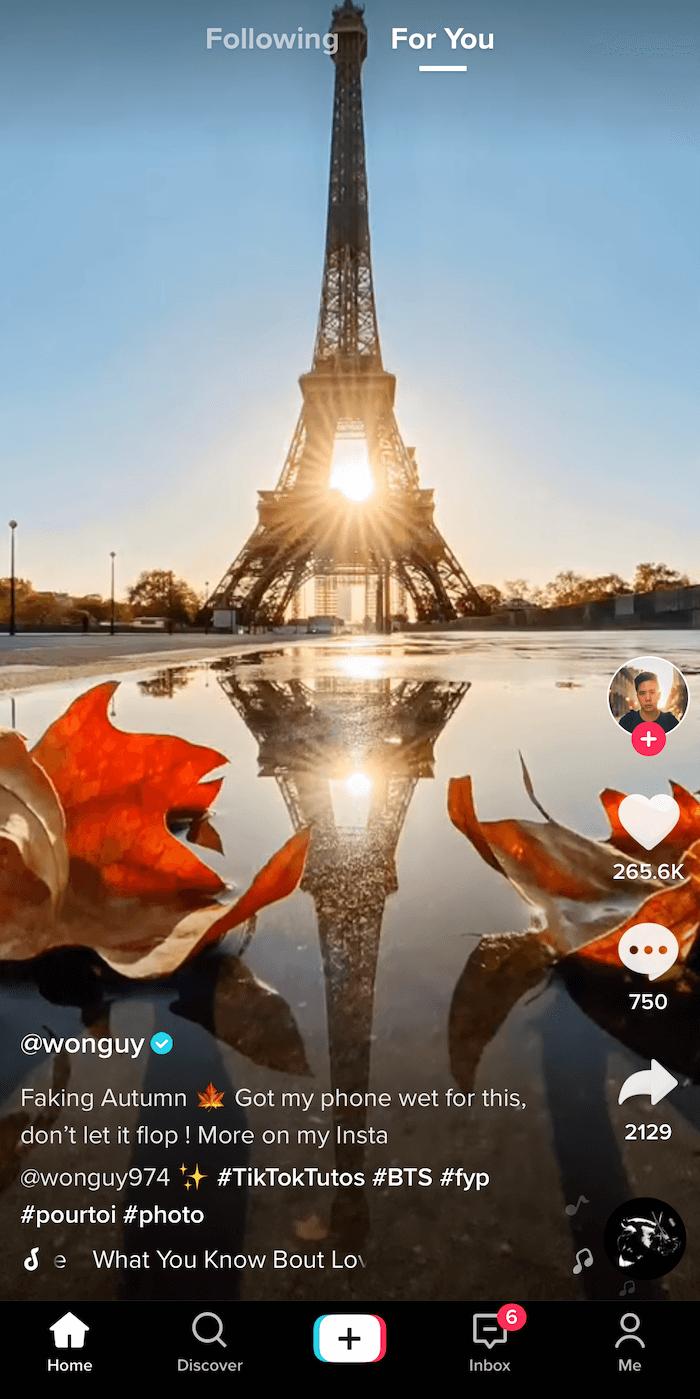 """@ wonguy974的tiktok帖子的屏幕快照,标题为""""伪装秋天"""",显示埃菲尔铁塔的轮廓和夕阳在它后面的反射,并反射在水坑中,该水坑由图像底部的两片秋叶构成"""