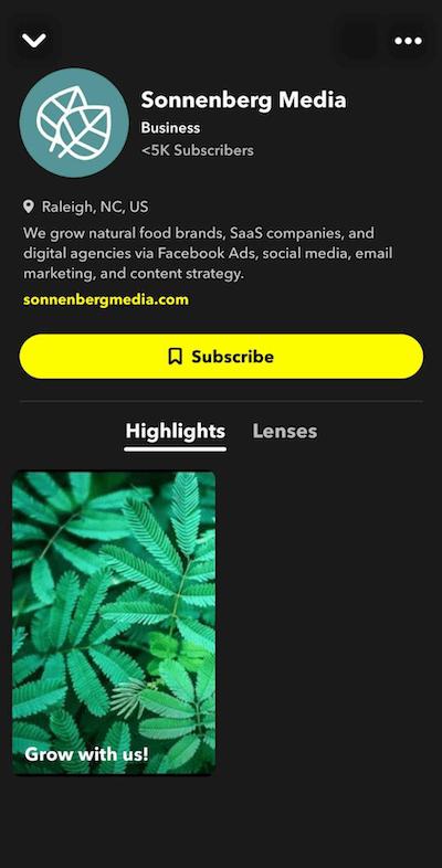 Picture snapchat profile 100% Secret