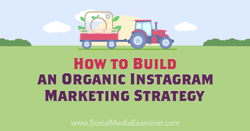How to Build an Organic Instagram Marketing Strategy by Corinna Keefe on Social Media Examiner.